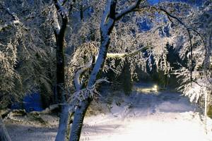 Winter-Wunderland Dezember 2010